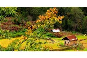 روستایی به طعم سیب در حوالی پایتخت