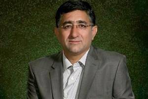 کاظمی: با هدایت دولت چوب مورد نیاز تأمین و برای جایگزین برنامهریزی شود