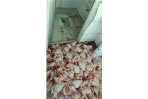 شستشوی مرغ در سرویس بهداشتی تایید شد/ متخلفان دستگیر شدند/عکس