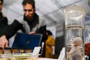برپایی نمایشگاه دستاوردهای نو آورانه علمی و صنعتی مکاترونیک و کامپیوتر در واحد علوم و تحقیقات