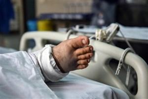 تعداد اهدا کنندگان مرگ مغزی در سال ۹۵  بیش از ۸۷۰ نفر بود