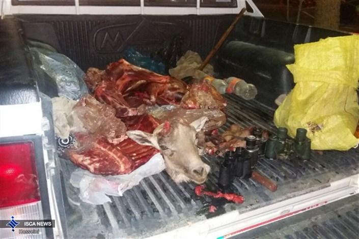 شکارچی غیر مجاز در بیارجمند شاهرود