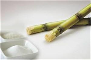 عرضه در بورس و مجوز واردات، ۲عامل تعادل بازار شکر