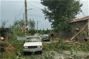 طوفان تقریبا تمامی شهرهای مازندران را محاصره کرد/خسارت های طوفان در شهرستان های مازندران