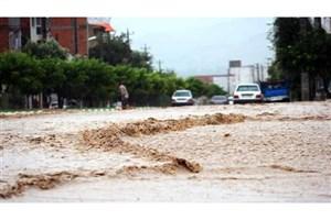 بارش شدید باران راه ارتباطی 12 روستا و برق 2 روستا را قطع کرد