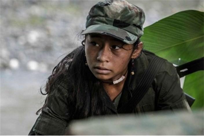 راهیان اسکار خارجی بیشتر شدند/ تعیین نمایندگان برزیل و کلمبیا
