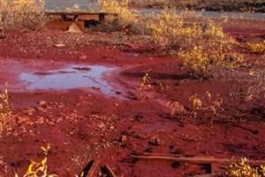 """نشت مواد معدنی در رودخانه """"دولدیکانی"""" در روسیه"""