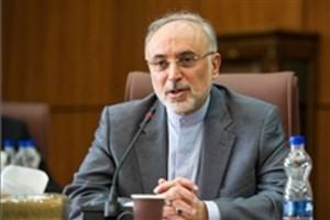 تولید ٢٠ هزار مگاوات برق هستهای در بلندمدت از اهداف ایران است
