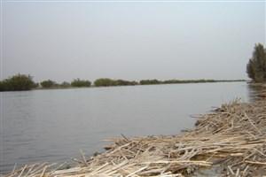 احیای تالاب هامون  ازموضوعات کارگروه شهرستانی حوزه سیستان است