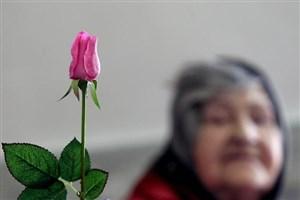 دانشگاه علوم پزشکی کرمان فلوشیپ بیولوژی سالمندی می پذیرد