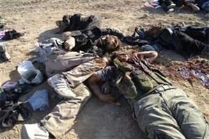 هلاکت هفت تروریست داعشی در غرب الانبار