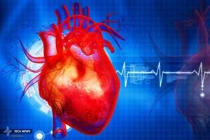 پروتئین از تصلب شریان و  حمله قلبی محافظت می کند