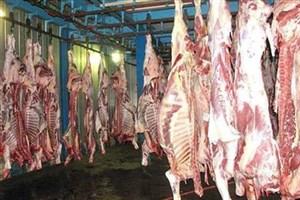 افزایش مجدد قیمت گوشت قرمز در بازار