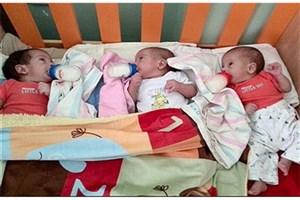 جزئیات کمک های بهزیستی به خانواده های دارای فرزند چندقلو/ خانواده چندقلوها صاحب خانه می شوند