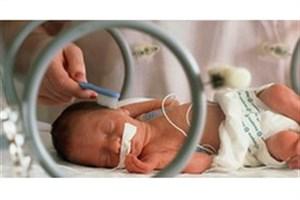 تولد ۲۵ تا ۳۰ هزار نوزاد معلول آمار بالایی است