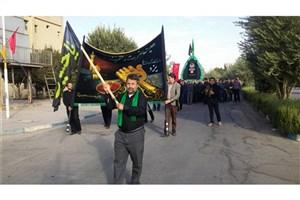برگزاری آیین نخل برداری در دانشگاه آزاد اسلامی یزد/تصاویر