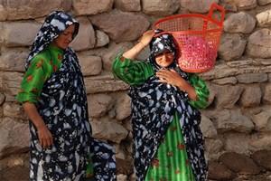 فراموششدگان/١٥ اکتبر، روز جهانی زنان روستایی است