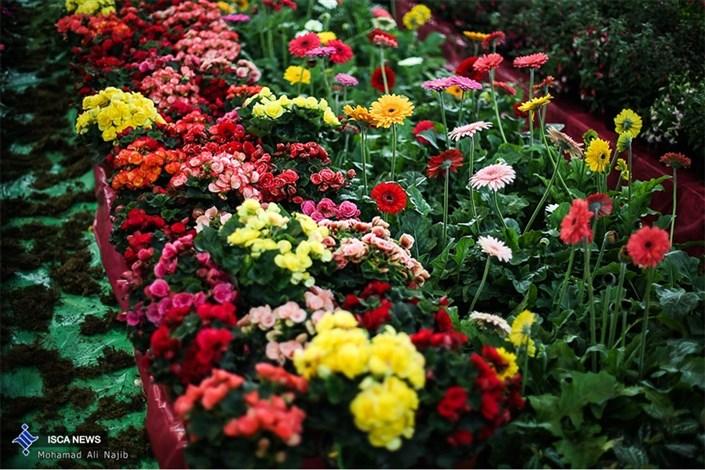چهاردهمین نمایشگاه بین المللی گل و گیاه
