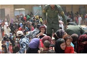کمک نیوزیلند به آوارگان احتمالی عملیات آزادسازی موصل