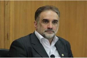 حکیمی پور:  پارلمان اصلاحات جایگزین شورای هماهنگی نمی شود