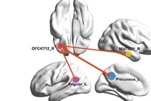 کشف آدرس افسردگی در مغز!