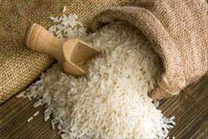 نرخ انواع برنج در بازار امروز