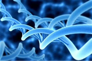دستاوردهای طرح ژنوم مواد بررسی شد