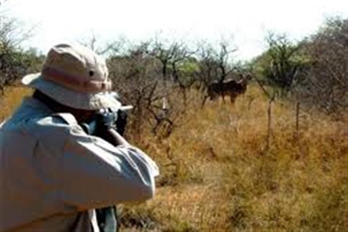 شکارچیان اسلحههایشان را به موزه محیط زیست بدهند