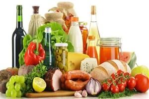 صادرات ۵۰۰ تن مواد غذایی از ایران به قطر