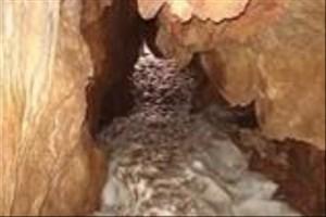 غار سراب کبودرآهنگ به عنوان اثر طبیعی ملی ثبت می شود