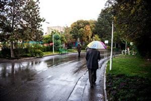 هوای تهران بارانی می شود/آغاز بارش باران در مناطق زلزله زده