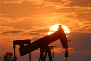 پروژه های نفتی دانشجویان نیازمند حمایت های صنعتی است