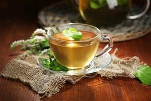 ابداع نوشیدنی گیاهی با شیرینکنندگی طبیعی توسط دانشجوی دانشگاه آزاد اسلامی سبزوار