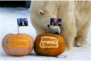 اولین ایستگاه قطار انتخاباتی آمریکا در نیوهمپشایر /نظرسنجی خبرگزاری مختلف از نتیجه انتخابات ریاست جمهوری آمریکا