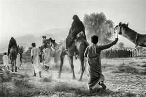 """دانشجوی واحدسما بندرعباس در میان منتخبین مسابقه ملی عکاسی"""" میراث عاشورا """""""