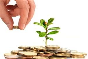 جزئیات سرمایهگذاری در بخش صنعت و معدن