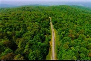 سنگینتر شدن مسئولیت سازمان جنگلها با ثبت جنگل هیرکانی