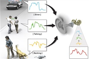 Smart Hearing Aid Isolates Speech from Noise