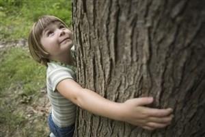 راهاندازی بنیاد کودک و طبیعت