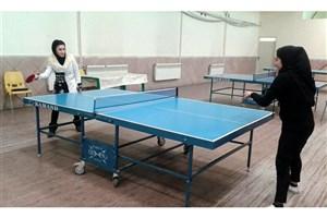 کسب عنوان قهرمانی مسابقات تنیس روی میز استان همدان توسط  مسئول تربیت بدنی واحد تویسرکان