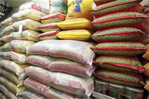 """نامه نمایندگان به """"حجتی"""" برای عدم واردات برنج"""