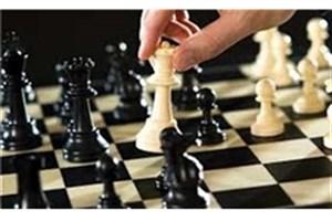 شادی پریدر نایب رئیس بانوان فدراسیون شطرنج شد