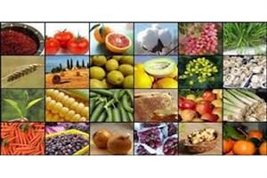 مرکز آمار ایران اعلام کرد؛ متوسط قیمت محصولات کشاورزی در زمستان ۹۵