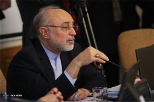 صالحی: آمریکا به تعهداتش در برجام عمل نمیکند