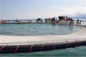 توسعه پروش ماهی در قفس به افزایش ثروت ملی می انجامد