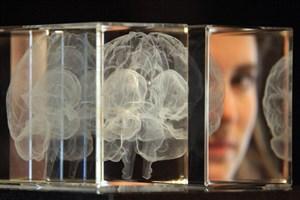 الگوریتم مغز انسان توسط دانشجوی واحد علوم و تحقیقات کشف شد