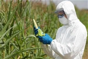 مسئولیت هر اتفاقی در استفاده از محصولات تراریخته با سازمان غذا و دارو است