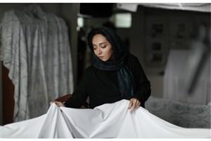 فیلمی به تهیه کنندگی نیکی کریمی از بخش آرای مردمی جشنواره فجر حذف شد