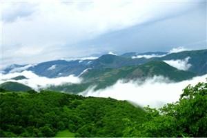 نقش جنگل های زاگرس در مهار طوفان های شن