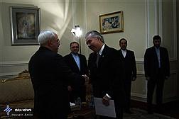 ظریف: ایران به دنبال ایجاد یک رابطه مستحکم با برزیل است
